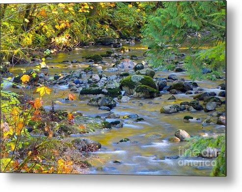Kanaka Creek Metal Print featuring the photograph Kanaka Creek In The Fall by Sharon Talson