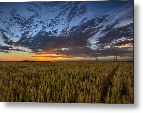 Kansas Metal Print featuring the photograph Kansas Color by Thomas Zimmerman