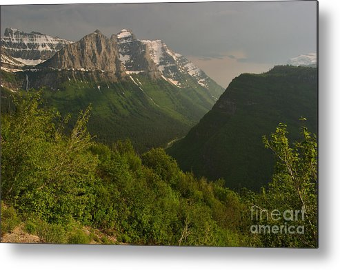 Garden Wall Metal Print featuring the photograph Late Afternoon Sun On The Garden Wall by Charles Kozierok
