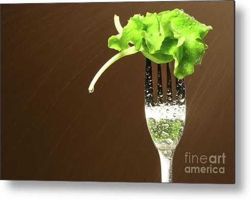 White Metal Print featuring the photograph Leaf Of Lettuce On A Fork by Sandra Cunningham