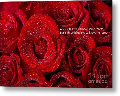 Valentines Metal Print featuring the photograph Life Without Love Will Have No Roses by James BO Insogna