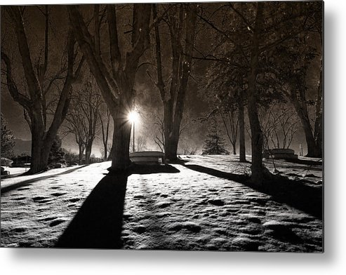 Snow Metal Print featuring the photograph Light In The Shadows by Gloria Pasko