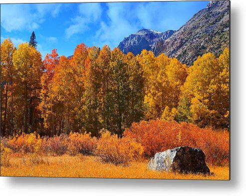 Lundy Metal Print featuring the photograph Lundy's Fall Show by Lynn Bauer