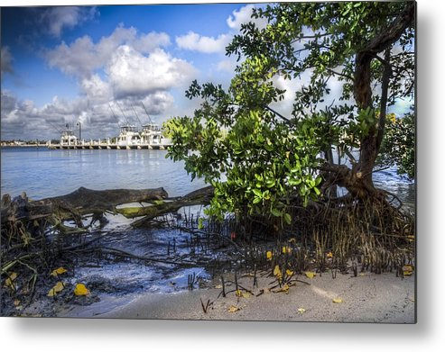 Boats Metal Print featuring the photograph Marina At The Inlet by Debra and Dave Vanderlaan