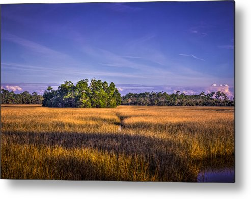 Bayport Metal Print featuring the photograph Marsh Hammock by Marvin Spates