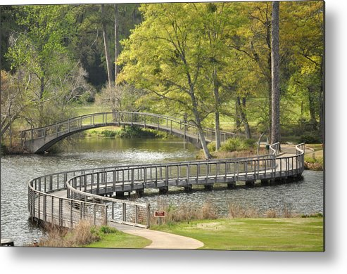Landscape Metal Print featuring the photograph Meandering by Nancy Wilkens