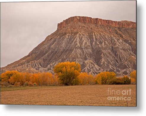 Afternoon Metal Print featuring the photograph Mesa by Fred Stearns