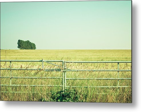Access Metal Print featuring the photograph Metal Gate by Tom Gowanlock