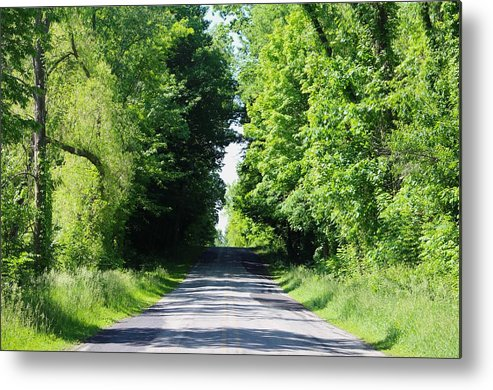 Lush And Beautiful Forests Line A Country Road Metal Print featuring the photograph Michigan Country Roads 43 by Sylvia Herrington