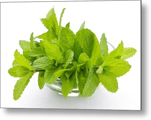 Mint Metal Print featuring the photograph Mint Sprigs In Bowl by Elena Elisseeva