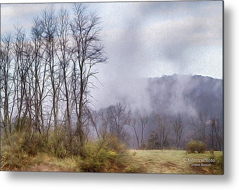 Trees Metal Print featuring the photograph Misty Morning by Season Bonner