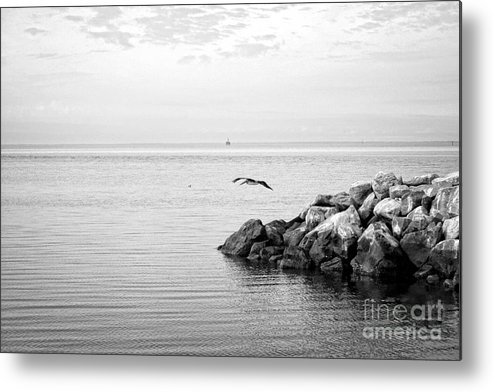 Seascape Metal Print featuring the photograph Mobile Bay 10 by Earl Johnson