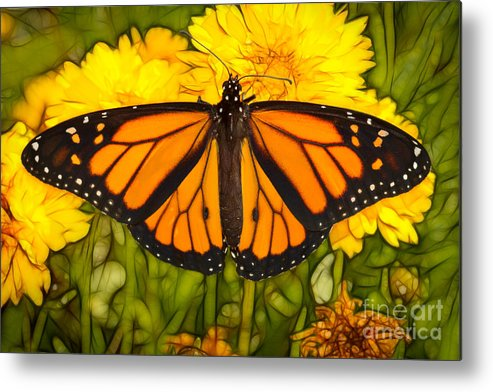 Animal Metal Print featuring the photograph Monarch Batik by Alice Cahill