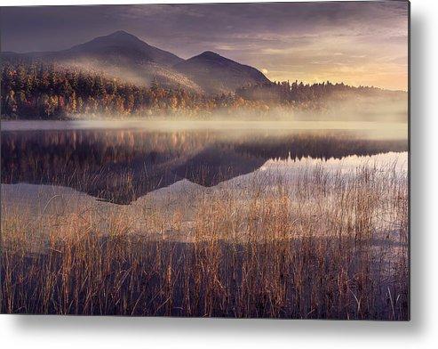Adirondack Metal Print featuring the photograph Morning In Adirondacks by Magda Bognar