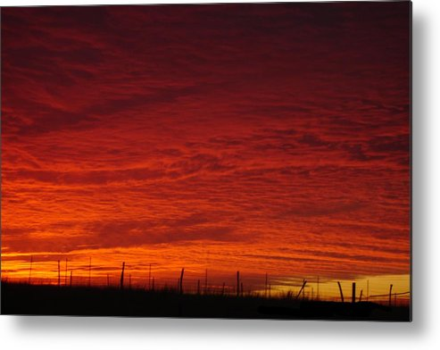 Texas Metal Print featuring the photograph Morning Texas Style by Melissa Penny