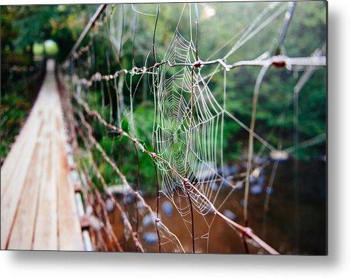 Spider Metal Print featuring the photograph Morning Web by Kurt Jones