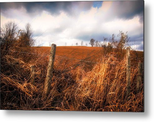 Landscape Metal Print featuring the photograph Mountain Pasture by Bob Orsillo
