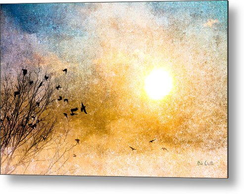 Orsillo Metal Print featuring the photograph New Day Yesterday by Bob Orsillo