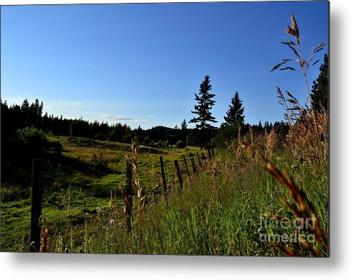 Phil Dionne Photography Metal Print featuring the photograph Nicola Fence I by Phil Dionne