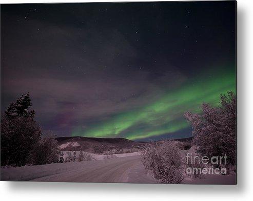Snowy Metal Print featuring the photograph Night Skies by Priska Wettstein