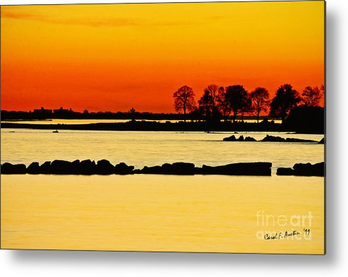 Sunset Metal Print featuring the photograph Orange Sunset by Carol F Austin