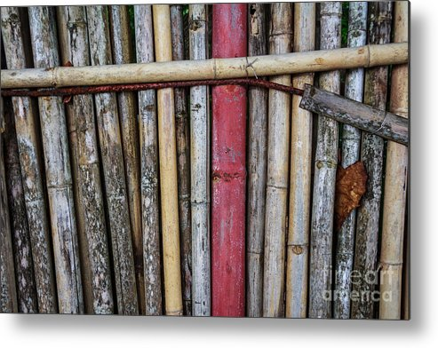 Brown Metal Print featuring the photograph Old Bamboo Fence by Niphon Chanthana