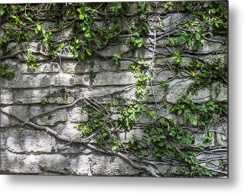 St. Augustine Metal Print featuring the photograph Old Coquina Wall by Rich Franco