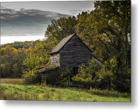 Landscape Metal Print featuring the photograph Overgrown by Amber Kresge
