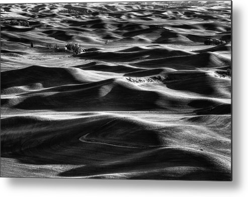 Wheat Metal Print featuring the photograph Palouse In Black And White by Mark Kiver