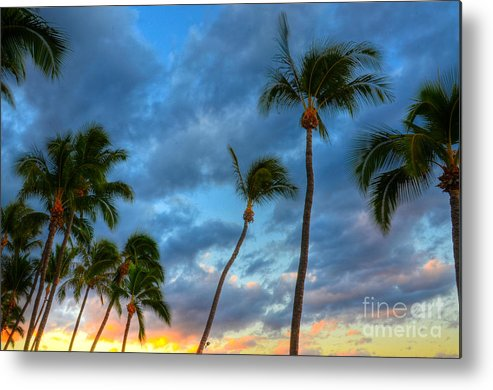 Pastel Metal Print featuring the photograph Pastel Tropical Sunrise by Kelly Wade