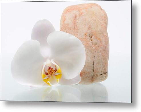 Beautiful Metal Print featuring the photograph Phalenopsis And Rock 51 by W Chris Fooshee