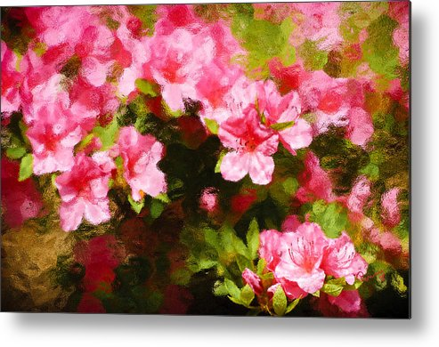 :penny Lisowski Metal Print featuring the photograph Pink Azealas by Penny Lisowski