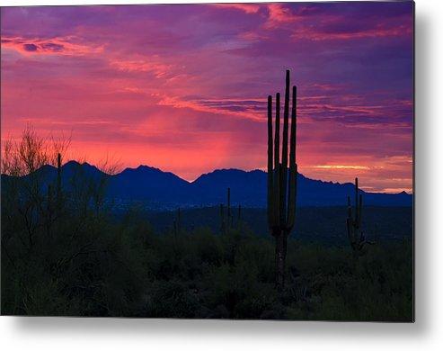 Sunset Metal Print featuring the photograph Pink Desert Skies by Saija Lehtonen