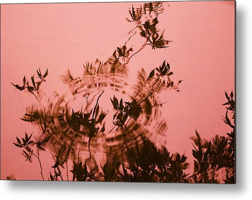 Water Level Metal Print featuring the photograph Pink Level by Michal Stosel