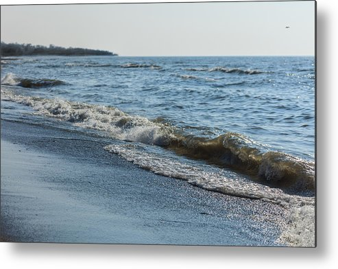 Early Spring Metal Print featuring the photograph Plastic Wave by Mitchell Bennett