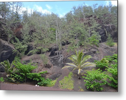 Maui Metal Print featuring the photograph Prehistoric Presence by Evan Silver