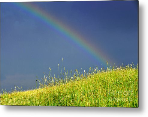Rainbow Metal Print featuring the photograph Rainbow Over Pasture Field by Thomas R Fletcher
