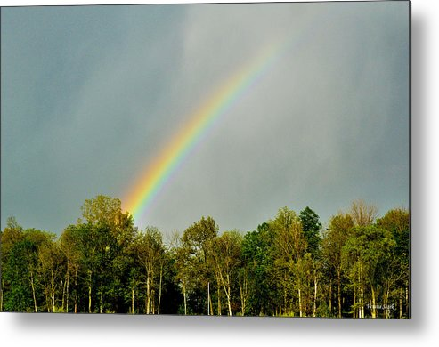 Rainbow Metal Print featuring the photograph Rainbow To The Clouds by Verana Stark
