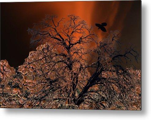 Oak Tree Metal Print featuring the digital art Ravens Tree by Sandra Selle Rodriguez