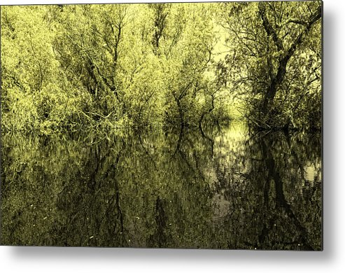 Reflections Metal Print featuring the photograph Reflections 7 by Vessela Banzourkova