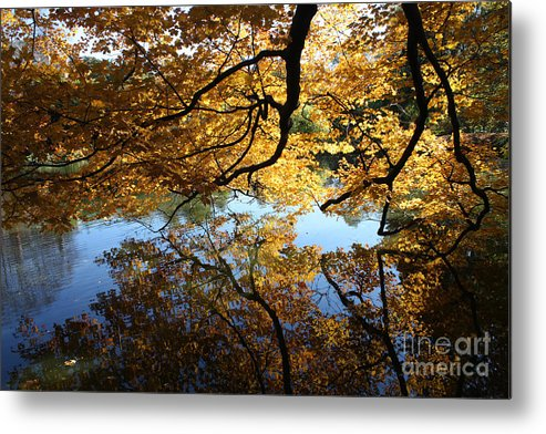 Reflections Metal Print featuring the photograph Reflections by John Telfer