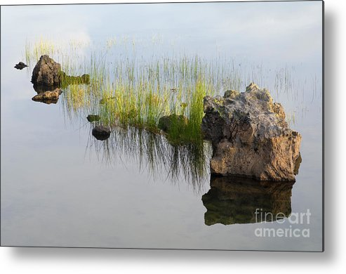 Reed Metal Print featuring the photograph Rocks In Lake by John Shaw