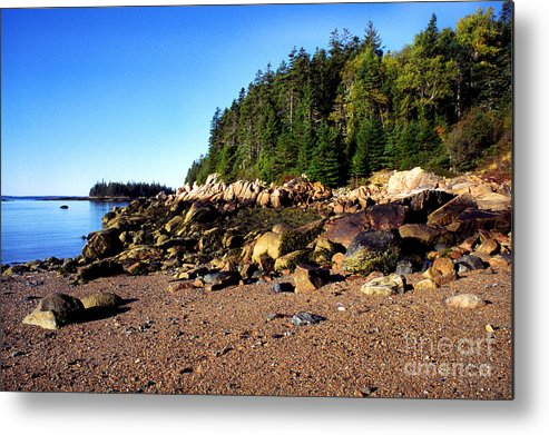 Shoreline Metal Print featuring the photograph Rocky Shoreline Deer Isle Maine by Thomas R Fletcher