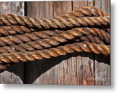 Rope Metal Print featuring the photograph Roped by Dan Holm