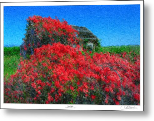 Valentines Metal Print featuring the photograph Rose Cabin by Lar Matre
