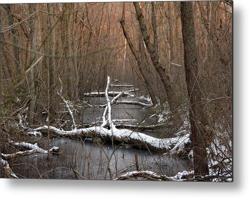 Logs Metal Print featuring the photograph Salty Logs by Bill Helman