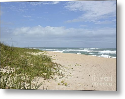 Beach Metal Print featuring the photograph Sand Dunes And The Sea by Carol Bradley
