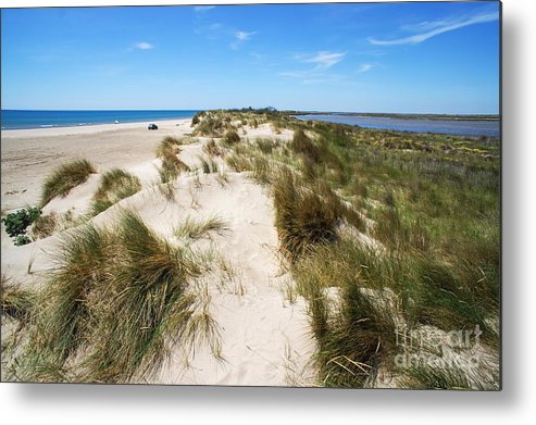 Scenics Metal Print featuring the photograph Sand Dunes Separation by Sami Sarkis