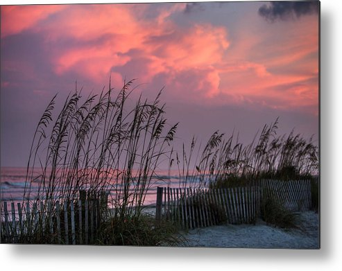 Seaoats Metal Print featuring the photograph Seaoats Sunset by Mic Smith