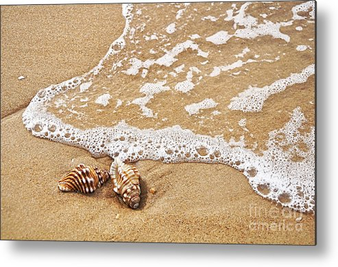 Photography Metal Print featuring the photograph Seashells And Lace by Kaye Menner